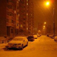 В Москве - снег (Dsc09455) :: Андрей Лукьянов