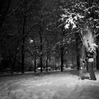 WN :: Сергей Сиваш