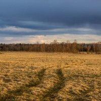 Охотничьи дорожки :: Евгений Никифоров