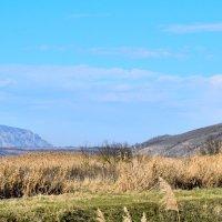 11 декабря гора Змейка :: Мария Климова