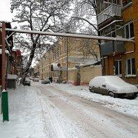 Снежная зима. :: Анфиса