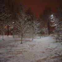 ночной сквер :: Oleg Rudakov
