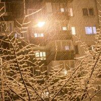 заснеженное дерево :: Лариса Батурова
