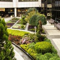 Новый аэропорт г. Адлер. :: Nonna
