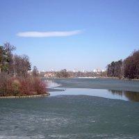 Царицынский пруд. :: Oleg4618 Шутченко