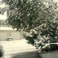 Снежная буря в городе Вейн, США. :: Елена