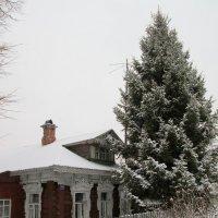Дом под ёлкой. Скоро Новый год... :: Михаил Попов