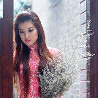 Вьетнамская красавица 2 :: Андрей Малинин