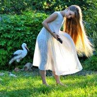 Ветер, ветер, что творишь? :: Ирина Данилова