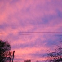 Лиловый закат :: вера Верхозина