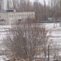 первый снег :: Анатолий Бугаев