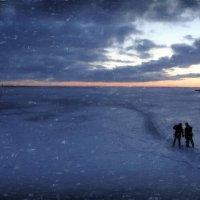 Финский залив :: sv.kaschuk