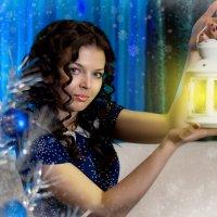 Зимний приветик :: Dina Ross
