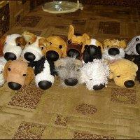 Коллекция собачек :: Нина Корешкова