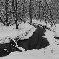 IMG_7208 - р. Серебрянка зимой :: Андрей Лукьянов