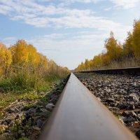 Железная дорога :: Alex Bush