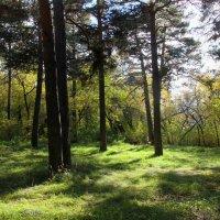 Пейзаж :: Александр Садовский