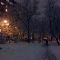 Снег вечером :: Павел Михалев