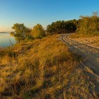На исходе осеннего дня :: Denis Aksenov