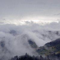 Дождь в Карпатах :: Nina Streapan