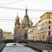 Канал Грибоедова и Спас на крови. :: Андрей Печерский