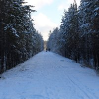 зима :: Наталия Алексеевна