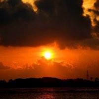 Sunset 2 :: Olga Chertanovskaya
