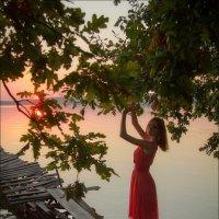 Уходящая в закат :: Елена Ерошевич