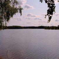 Летний день у озера :: Татьяна Ломтева