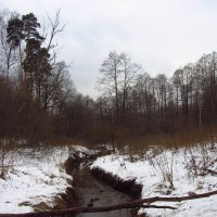 IMG_7427 - Когда снимать нечего :: Андрей Лукьянов