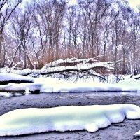 зимой на речке :: Владимир Артюхов