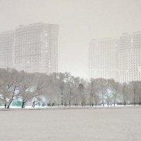 Паруса в снегу :: михаил кибирев