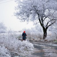В деревне :: Виктория Гавриленко