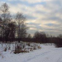 IMG_7533 - По-декабрьски солнечно :: Андрей Лукьянов
