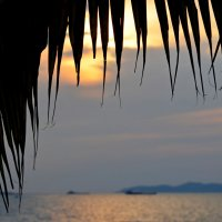 Тропический закат :: Дмитрий Боргер