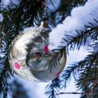 Новый год настает.. :: Светлана