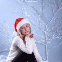 скоро новый год :: Виктория Гринченко