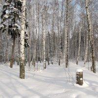 Была зима... :: Ирина Нафаня