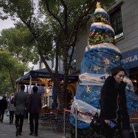 Улица Син Ти Тьи в ожидании праздника :: Андрей Фиронов