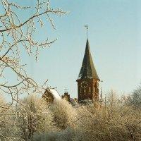В морозный день :: Сергей Карачин