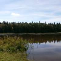 Лесное озеро :: Валентина Жукова