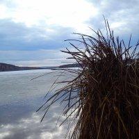 Зимнее озеро :: оксана
