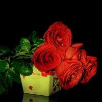 Розы :: Виктор Филиппов