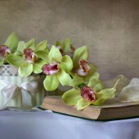Композиция с орхидеями :: lady-viola2014 -