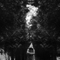 Монах :: Аndrew Theodoroff