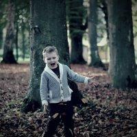 В лесу :: Wow4ik Sp