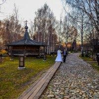 свадьба Андрей и Ольга :: Ольга Гребенникова