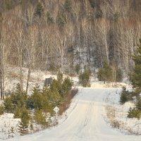 В горах в декабре :: galina tihonova