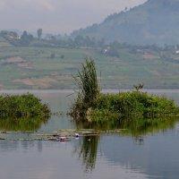 Озеро Буньёни :: Евгений Печенин