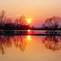 На закате. :: Андрей Синицын